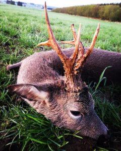huntingpassion